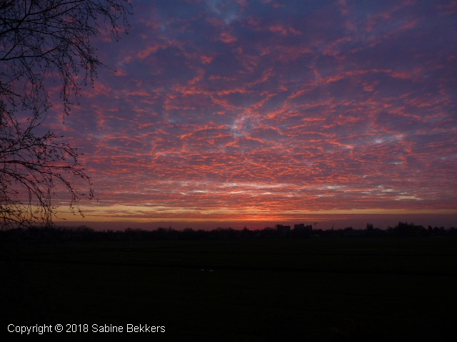 2008 12 18-12 zonsopgang Wilmkebreek (1)
