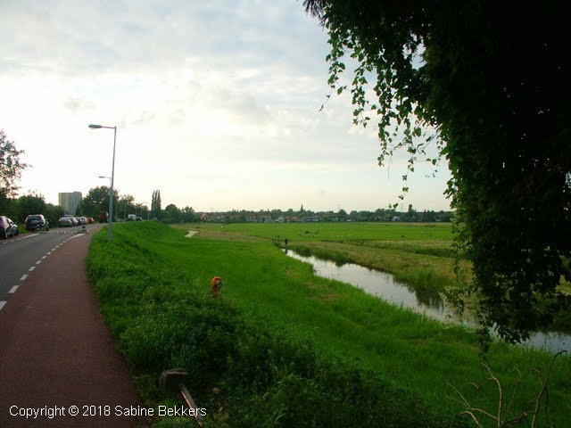 2008 8 4-8 Wilmkebreek wandeling (14)