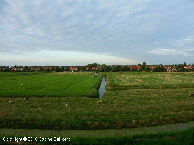 2008 8 4-8 Wilmkebreek wandeling (17)