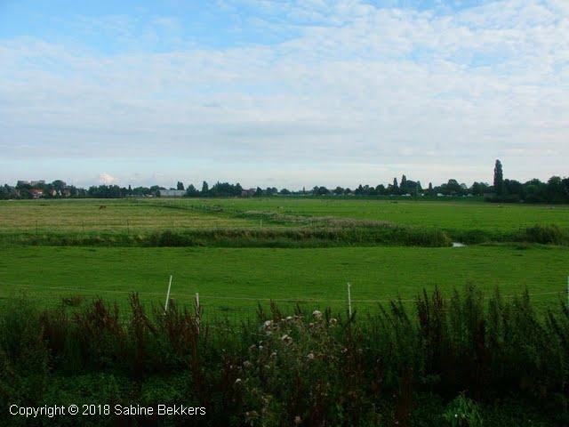 2008 8 4-8 Wilmkebreek wandeling (4)