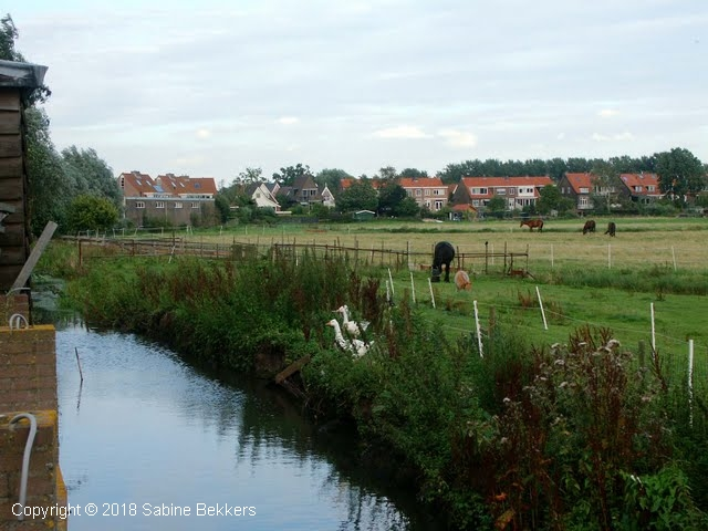 2008 8 4-8 Wilmkebreek wandeling (5)