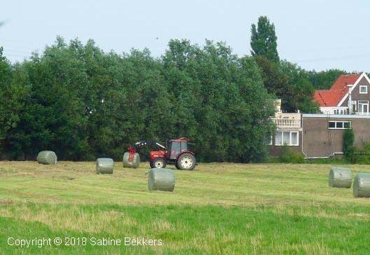 2009 8 5-8 Boer aan het werk (4)