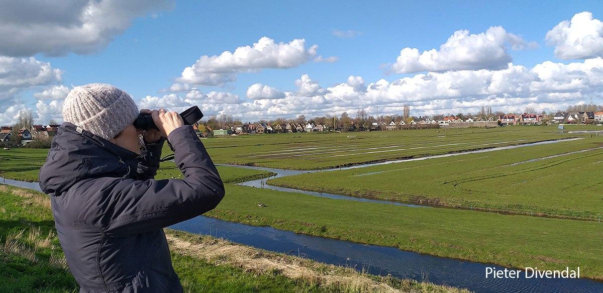 Pieter-Divendal-210411-bird-watching