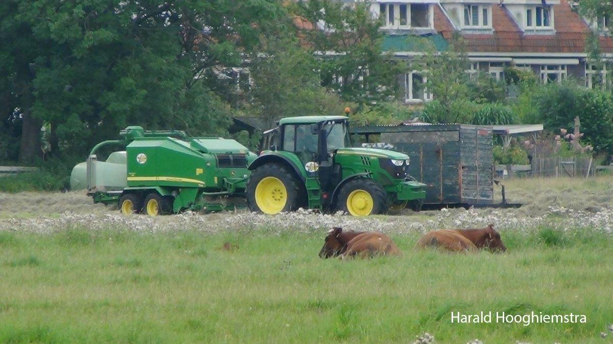 Harald-maaien-06-LR