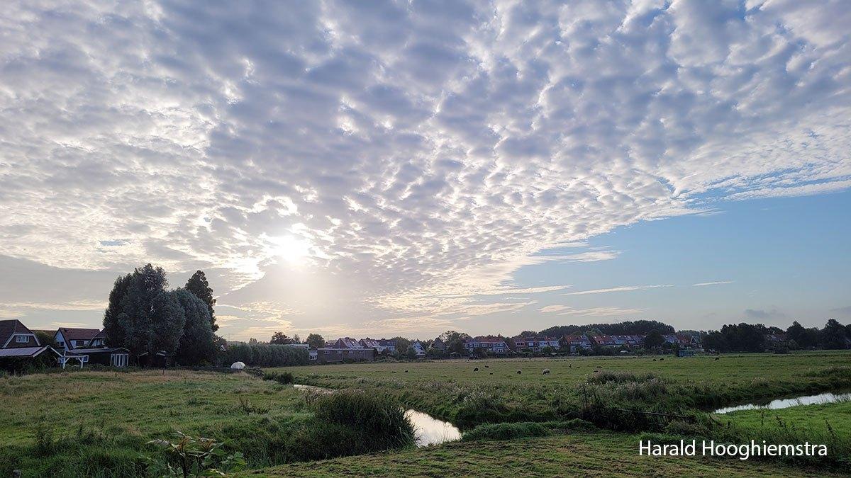 Harald-ochtendgloren-02-LR