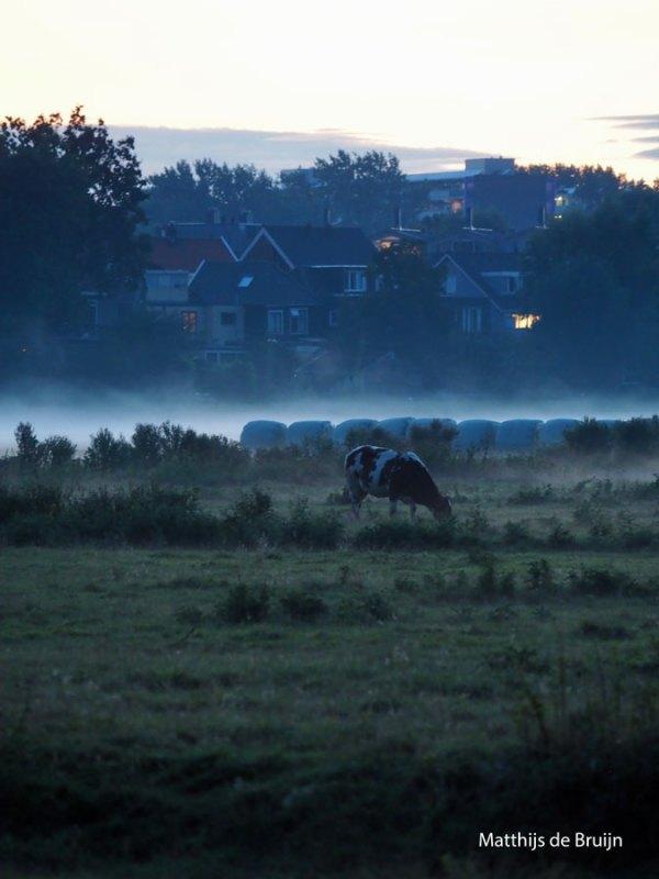 Matthijs-de-Bruijn-dampende-warme-zomeravond
