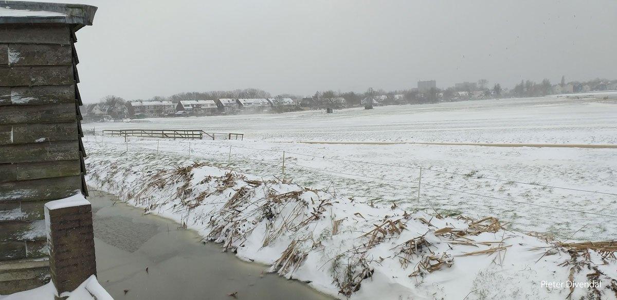Pieter-Divendal-05LR