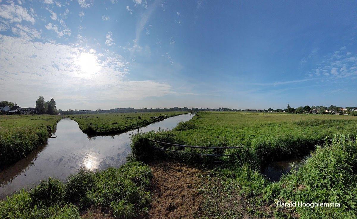 Harald-polder-tegenlicht-LR
