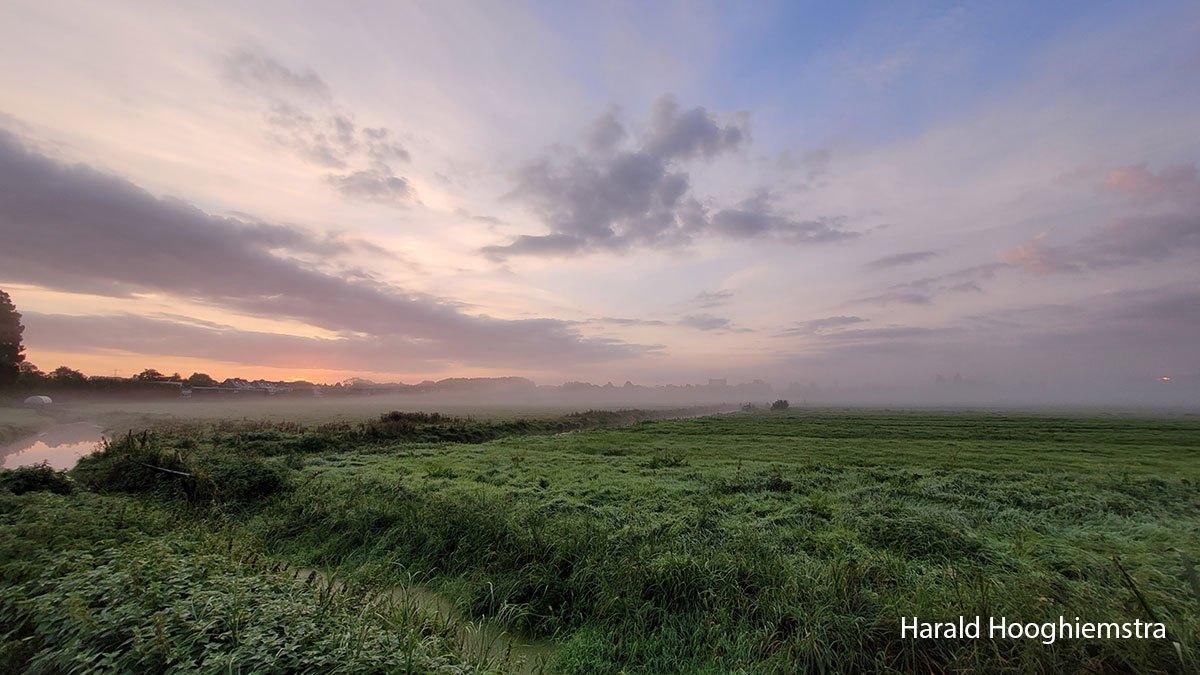 Harald-20210918-LR