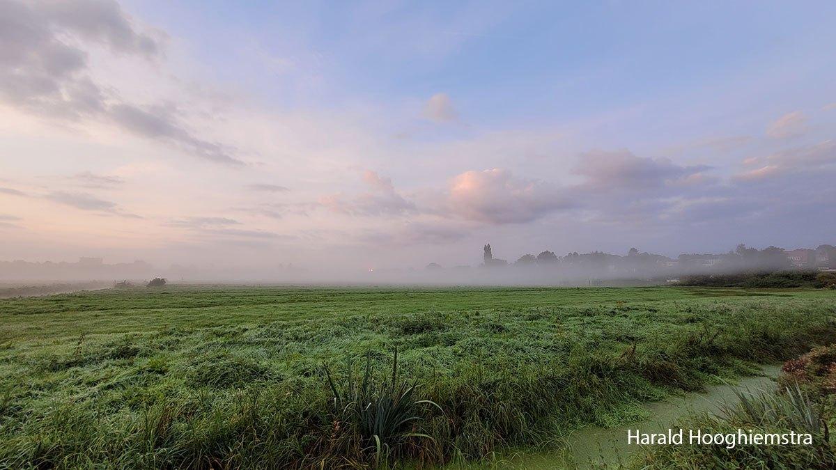 Harald-20210918-LR13