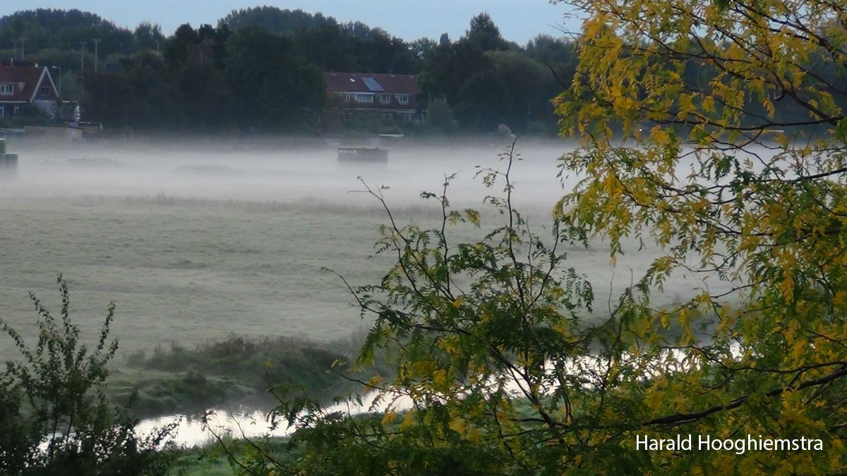 Harald-20210918-LR2