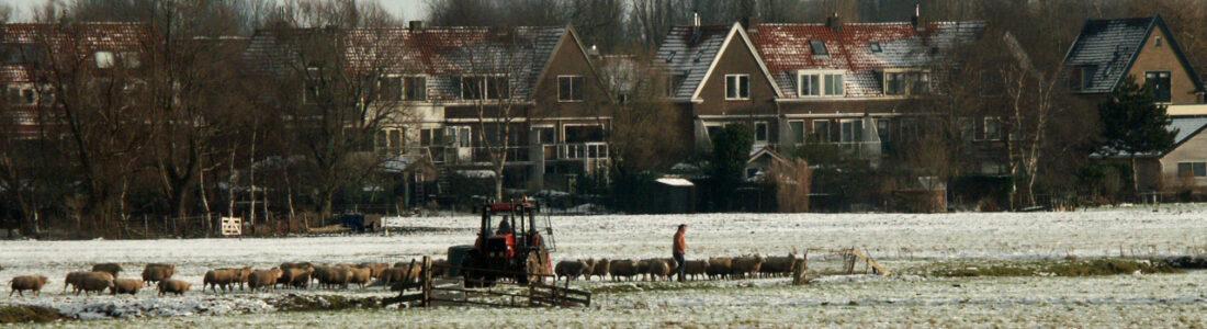 cropped-2005-12-30-12-Wilmkebreek-sneeuw-4-1.jpg